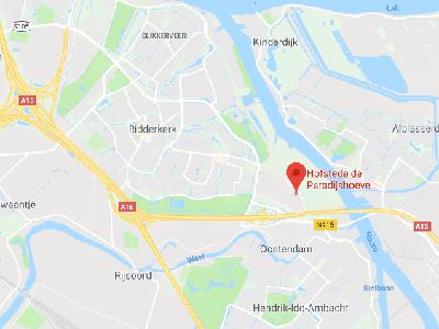 NLP Rotterdam Google
