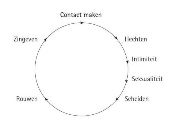 De Contactcirkel